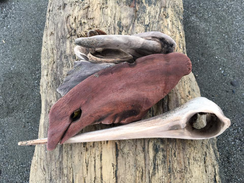 Gold Beach Driftwood