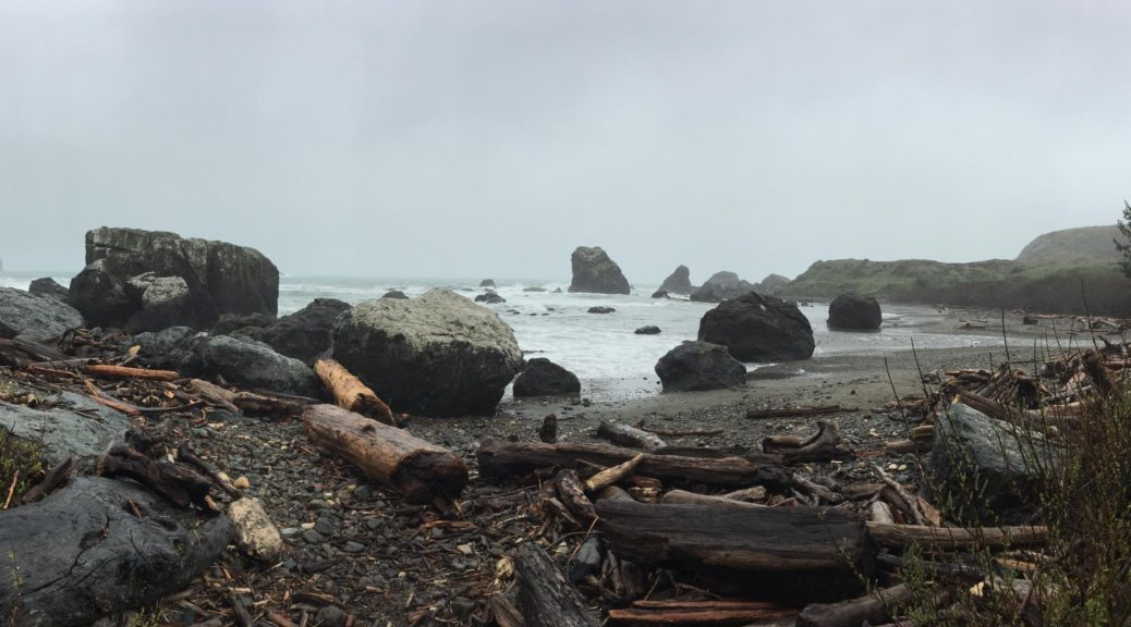 Lone Ranch Beach Panorama