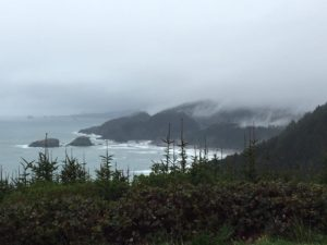 Viewpoint in Samuel H. Boardman State Scenic Corridor