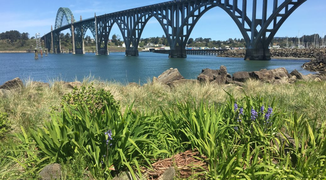 Yaquina Bay Bridge Newport