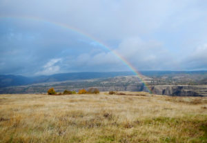 A rainbow extends over the Columbia River Gorge National Scenic Area during the 2014 Columbia Gorge Marathon. This area, east of Hood River and near the town of Mosier, is just north of the proposed Weyerhaueser clearcut. © Brian Denekas